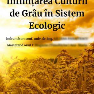 AMT - slidshow referat cultură grâu